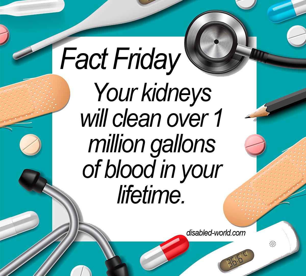 Fact Friday - June 17